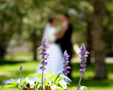 tips for diy modest wedding dresses, photo by DeLane Robinson for weddinglds.com