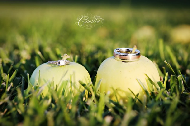 Featured Real LDS Wedding, The Wedding Rings