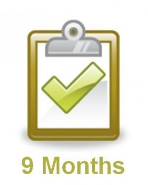 Nine Month Planning Checklist from WeddingLDS.com