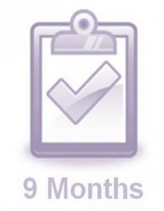wedding checklist by month