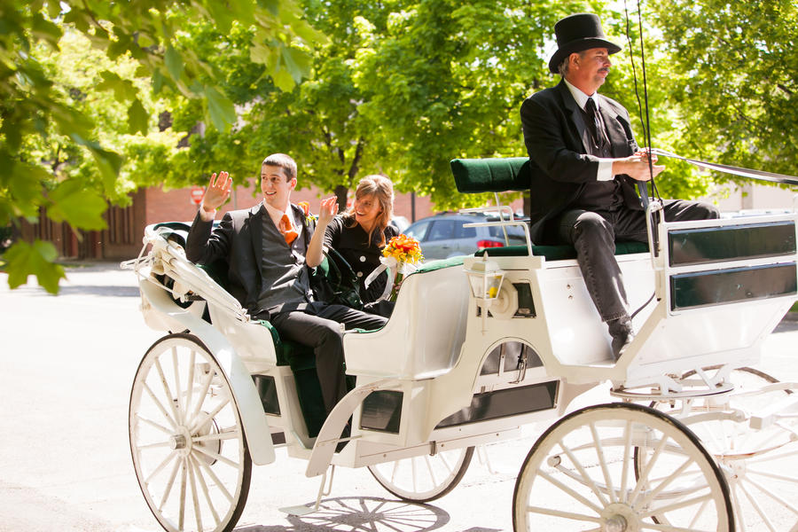 wedding horse and carriage